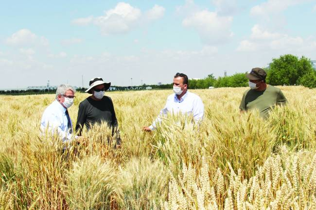Konya Gıda ve Tarım Üniversitesi'nden Tohumda Dev Atılım