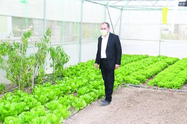 Beyşehir'deki Seralarda 12 ay üretim yapılabiliyor