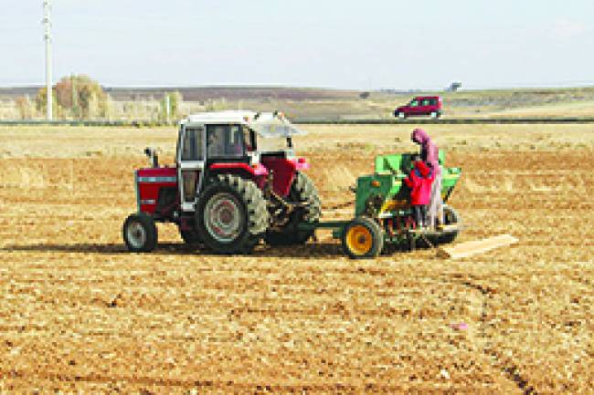 Hüyük Ziraat Odası Başkanı Hürriyet Şahin, Çiftçiler ekim çalışmalarını sürdürdürüyor.